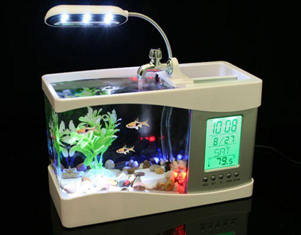 USB Bureau aquarium